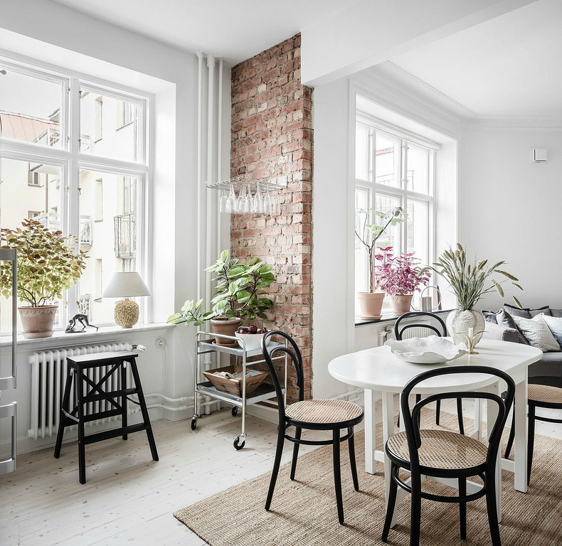 decorating with plants for renters